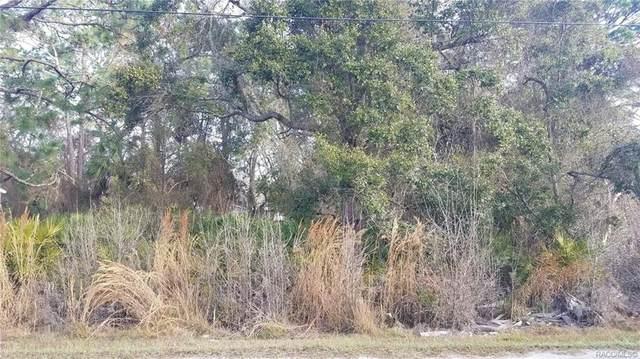 7661 Pedersen Loop W, Homosassa, FL 34447 (MLS #798665) :: Plantation Realty Inc.