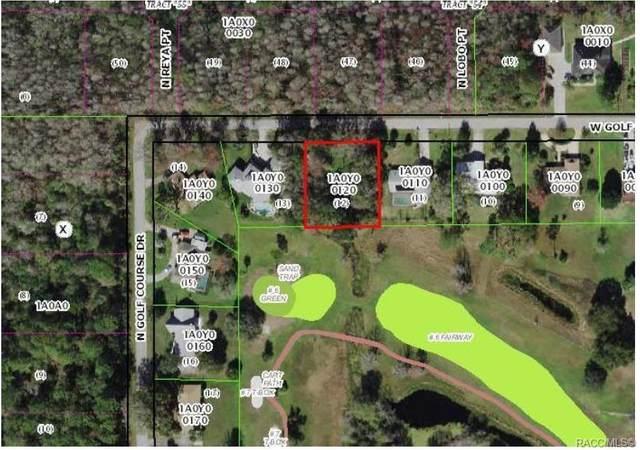 7824 W Golf Club Street, Crystal River, FL 34429 (MLS #798783) :: Plantation Realty Inc.