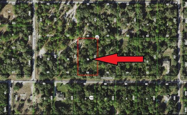 12543 W Flaxen Drive, Crystal River, FL 34428 (MLS #798789) :: Plantation Realty Inc.