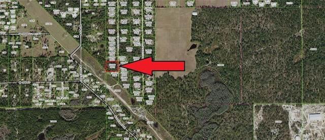 4223 N Mandrake Point, Crystal River, FL 34428 (MLS #798790) :: Plantation Realty Inc.