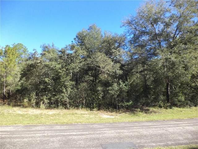 10225 N Sherman Drive, Citrus Springs, FL 34434 (MLS #798811) :: Plantation Realty Inc.