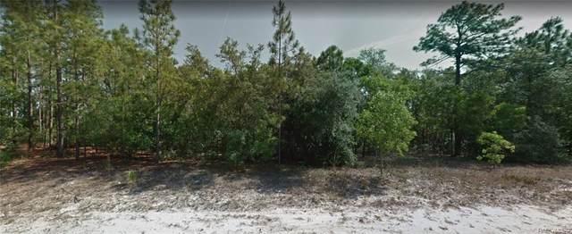 3527 W Marshal Place, Citrus Springs, FL 34433 (MLS #798888) :: Plantation Realty Inc.