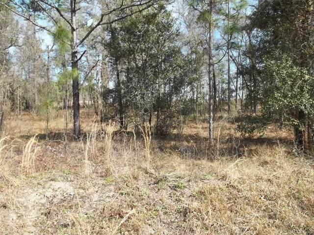 00 NW Falcon Avenue, Dunnellon, FL 34431 (MLS #798938) :: Plantation Realty Inc.
