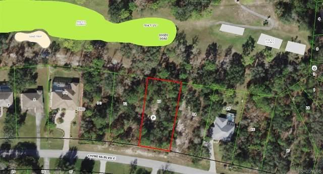 38 Cypress Boulevard E, Homosassa, FL 34446 (MLS #798943) :: Plantation Realty Inc.
