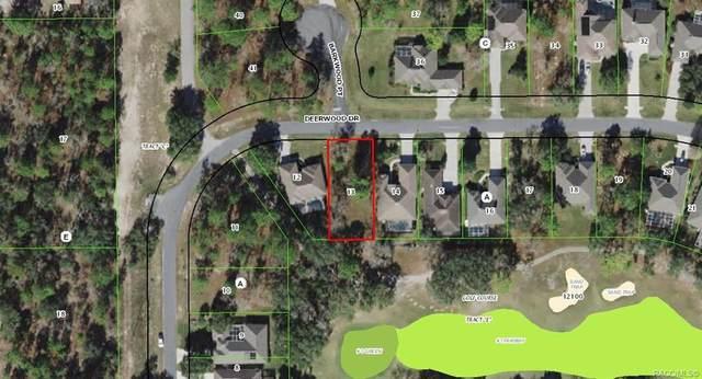 44 Deerwood And 4 Barkwood, Homosassa, FL 34446 (MLS #798946) :: Plantation Realty Inc.