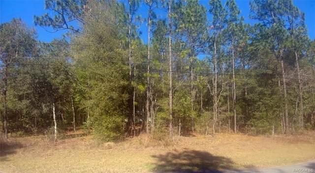5191 E Tenison Street, Inverness, FL 34452 (MLS #798959) :: Plantation Realty Inc.