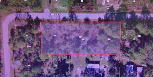 7652 W Pedersen Loop, Homosassa, FL 34446 (MLS #798969) :: Plantation Realty Inc.