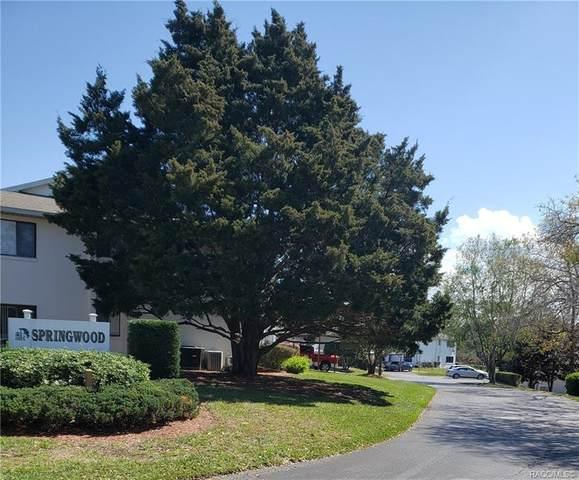 101 Anton Court, Homosassa, FL 34446 (MLS #798987) :: Plantation Realty Inc.