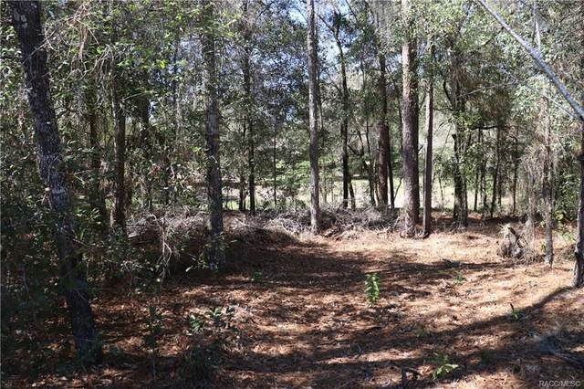 00 SW 195 Circle, Dunnellon, FL 34432 (MLS #798991) :: Plantation Realty Inc.