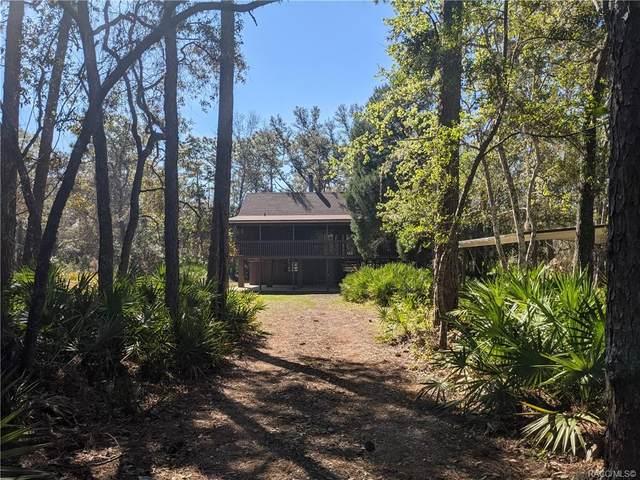 7664 W Miss Maggie Drive, Homosassa, FL 34448 (MLS #799006) :: Plantation Realty Inc.