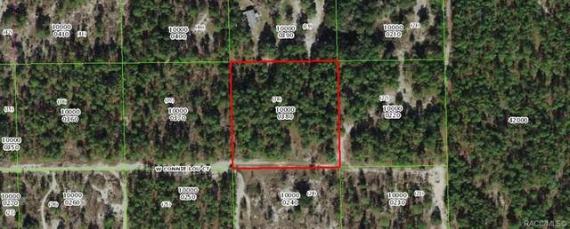 7109 W Connie Lou Court, Dunnellon, FL 34433 (MLS #799009) :: Plantation Realty Inc.