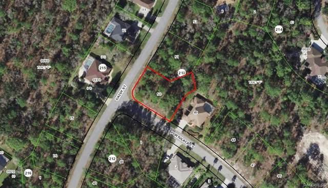 178 Daisy Street, Homosassa, FL 34446 (MLS #799021) :: Plantation Realty Inc.