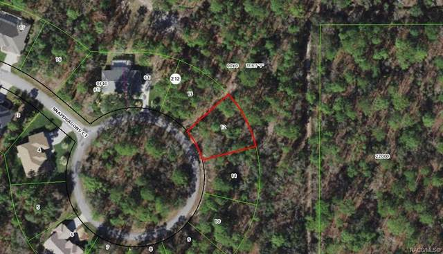 17 Snapdragons Court, Homosassa, FL 34446 (MLS #799034) :: Plantation Realty Inc.