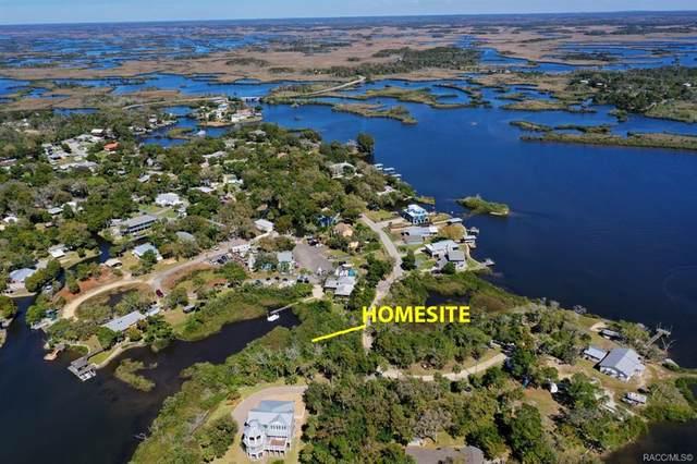 14067 W Siren Court, Crystal River, FL 34429 (MLS #799114) :: Plantation Realty Inc.
