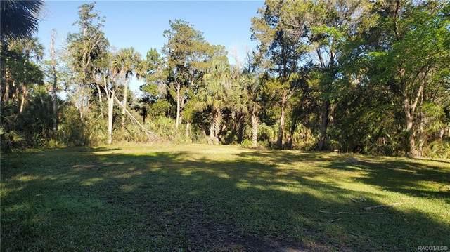 8877 W Harbor Lane, Homosassa, FL 34448 (MLS #799172) :: Plantation Realty Inc.