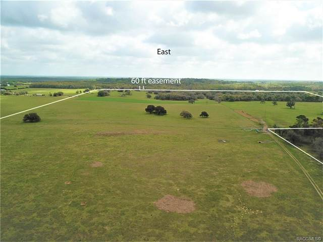 12884 S Pleasant Grove Road, Floral City, FL 34436 (MLS #799200) :: Plantation Realty Inc.