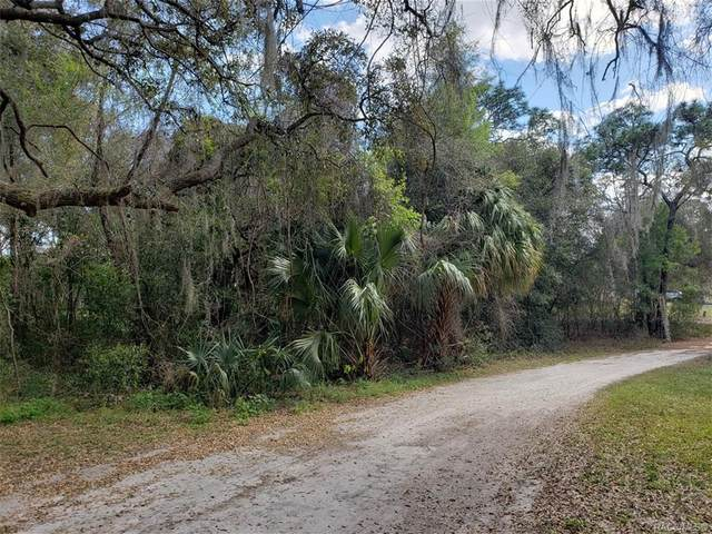 79 N Sheltering Oaks Drive, Inverness, FL 34453 (MLS #799245) :: Plantation Realty Inc.