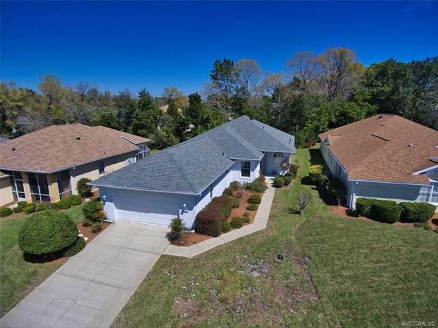 27 Byrsonima Loop W, Homosassa, FL 34446 (MLS #799253) :: Plantation Realty Inc.