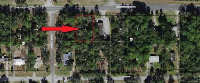 6962 W Homosassa Trail, Homosassa, FL 34448 (MLS #799295) :: Plantation Realty Inc.