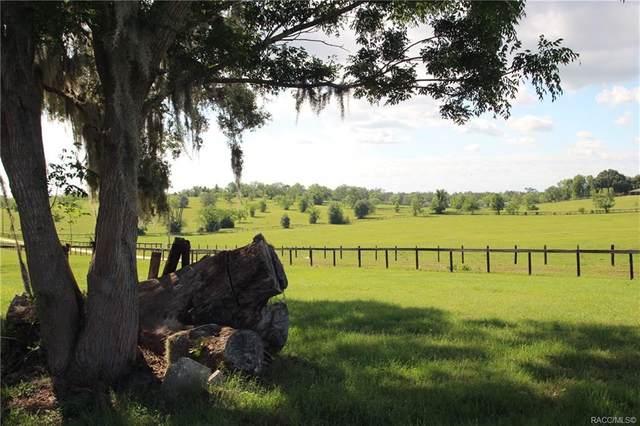 5460 S Lecanto Highway, Lecanto, FL 34461 (MLS #799384) :: Plantation Realty Inc.