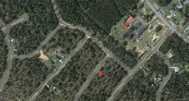 Lot 25 Roseway Avenue, Chipley, FL 32428 (MLS #799500) :: Plantation Realty Inc.