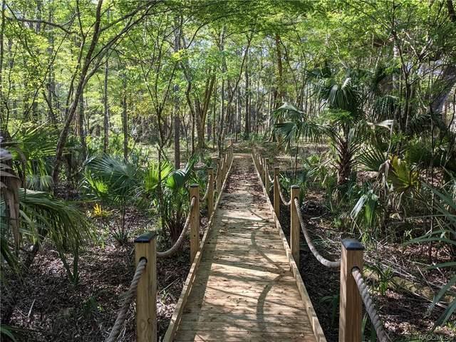 13651 W Foss Groves Path, Inglis, FL 34449 (MLS #799617) :: Plantation Realty Inc.