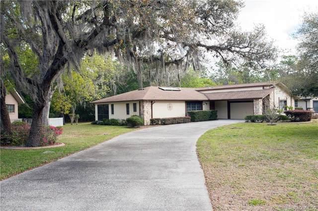 18 Shumard Court E, Homosassa, FL 34446 (MLS #799644) :: Plantation Realty Inc.