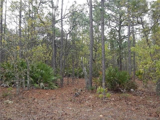 4985 N Tee Pee Drive, Beverly Hills, FL 34465 (MLS #799648) :: Plantation Realty Inc.