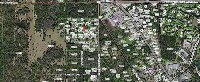 7105 W Crestview Lane, Crystal River, FL 34429 (MLS #799656) :: Plantation Realty Inc.