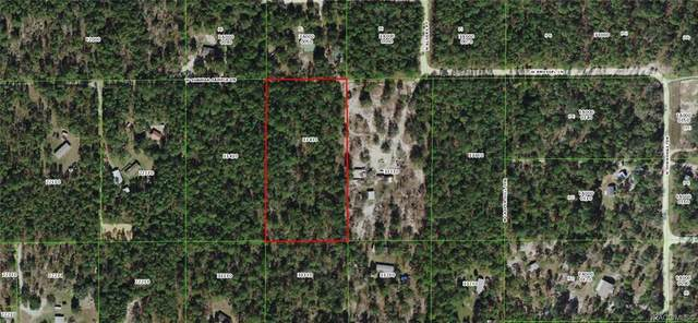 6930 W Sunmar Sample Lane, Dunnellon, FL 34433 (MLS #799680) :: Plantation Realty Inc.