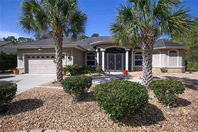 47 Torenia Verbenas Court, Homosassa, FL 34446 (MLS #799788) :: Plantation Realty Inc.