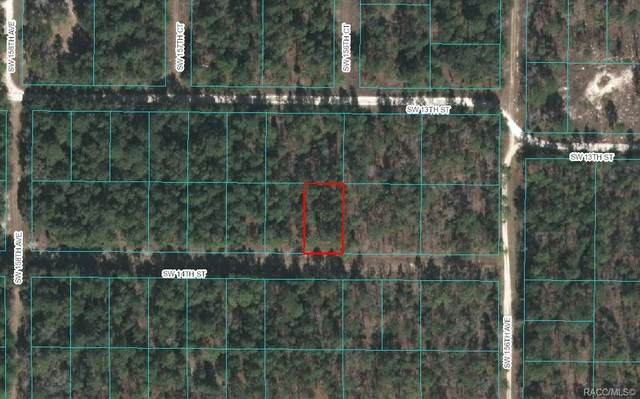 20 SW 14th Street, Dunnellon, FL 34481 (MLS #799814) :: Plantation Realty Inc.