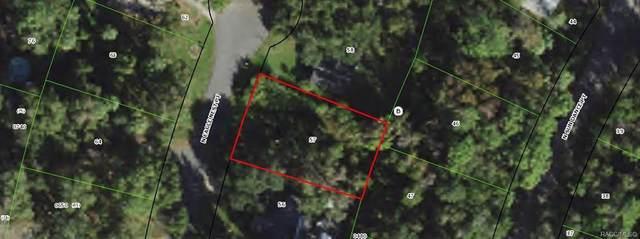 4073 N Eagle Nest Point, Crystal River, FL 34428 (MLS #799819) :: Plantation Realty Inc.