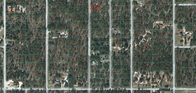 Lot 56 SW Deerpark Heights, Dunnellon, FL 34431 (MLS #799923) :: Plantation Realty Inc.