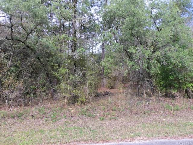 00 SW 204 Avenue, Dunnellon, FL 34431 (MLS #799934) :: Plantation Realty Inc.