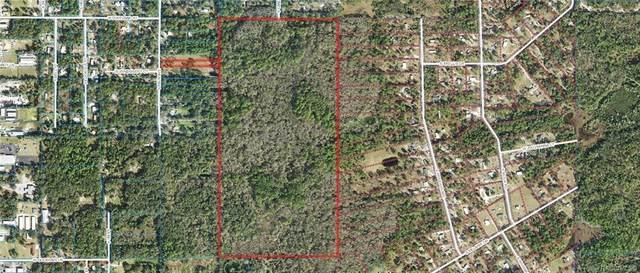 1500 S Candlenut Avenue, Homosassa, FL 34448 (MLS #799940) :: Plantation Realty Inc.