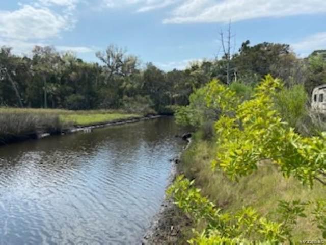 6950 S Hancock Road, Homosassa, FL 34448 (MLS #799972) :: Plantation Realty Inc.