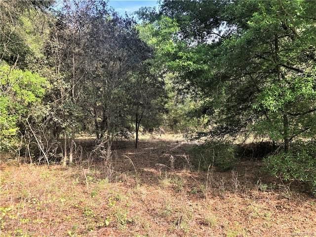 4037 S Brian Point, Homosassa, FL 34446 (MLS #799980) :: Plantation Realty Inc.