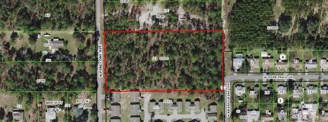 2225 N Pine Cone Avenue, Lecanto, FL 34461 (MLS #800008) :: Plantation Realty Inc.