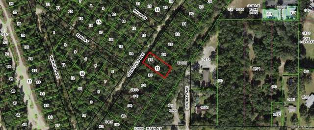 112 N Crestview Avenue, Inverness, FL 34452 (MLS #800029) :: Plantation Realty Inc.
