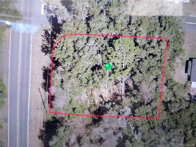101 Vassar Street, Inverness, FL 34452 (MLS #800034) :: Plantation Realty Inc.