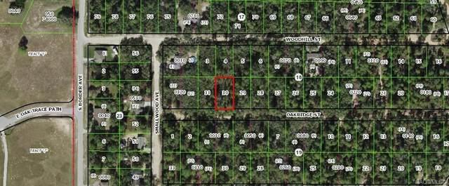 2904 Oakridge Street, Inverness, FL 34452 (MLS #800035) :: Plantation Realty Inc.