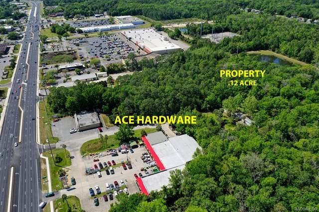 8726 W Faust Lane, Homosassa, FL 34446 (MLS #800093) :: Plantation Realty Inc.