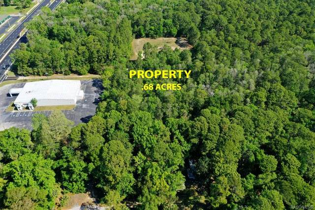 3649 S Pittsburgh Avenue, Homosassa, FL 34446 (MLS #800095) :: Plantation Realty Inc.