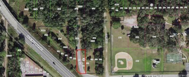 12135 N G W Carver Road, Dunnellon, FL 34434 (MLS #800099) :: Plantation Realty Inc.