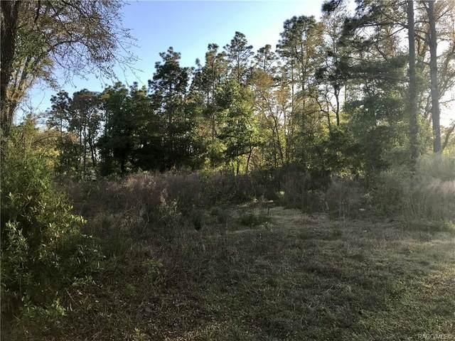 000 SE 161 Place, Summerfield, FL 34491 (MLS #800113) :: Plantation Realty Inc.