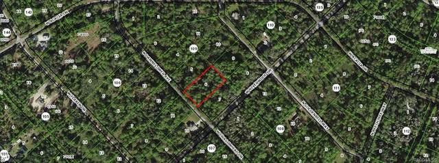 9513 N Dawnflower Avenue, Crystal River, FL 34428 (MLS #800169) :: Plantation Realty Inc.