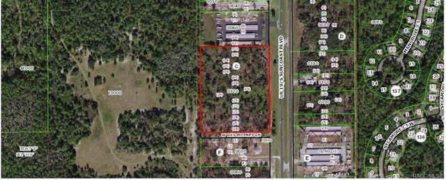 8686 S Suncoast Boulevard, Homosassa, FL 34446 (MLS #800196) :: Plantation Realty Inc.