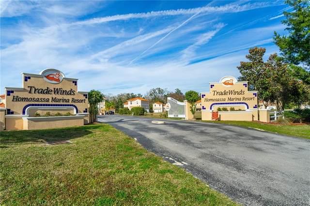 4791 S Amstel Drive, Homosassa, FL 34448 (MLS #800221) :: Plantation Realty Inc.