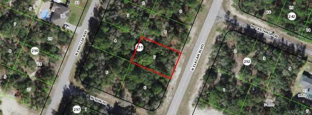 9506 N Elkcam Boulevard, Citrus Springs, FL 34433 (MLS #800224) :: Plantation Realty Inc.